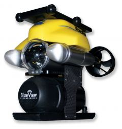 P4 PS 300XPS Port Security LE ROV System