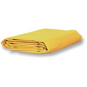 Disposable Blanket