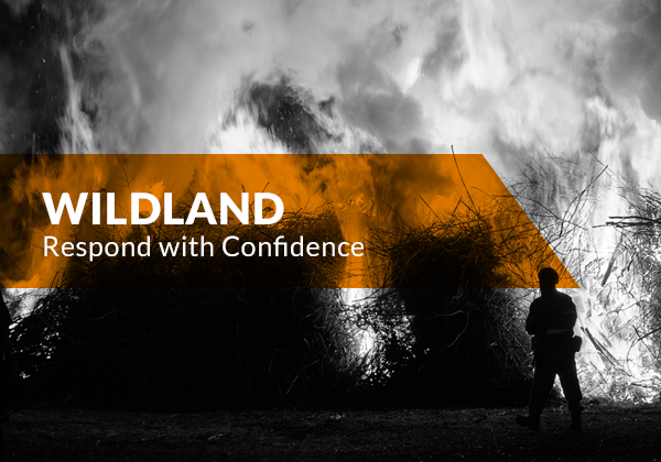 Task Force Tips Blitztac Promotional Image